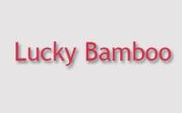 Lucky Bamboo Menu